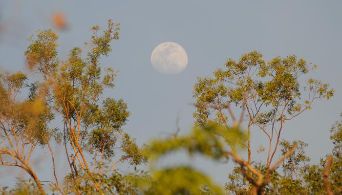 Mond über Kathrine Gorge