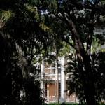 Darwin - Parlamentsgebäude durch Bäume